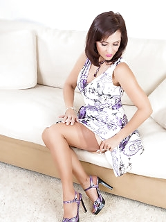 Dress Nylon Pics